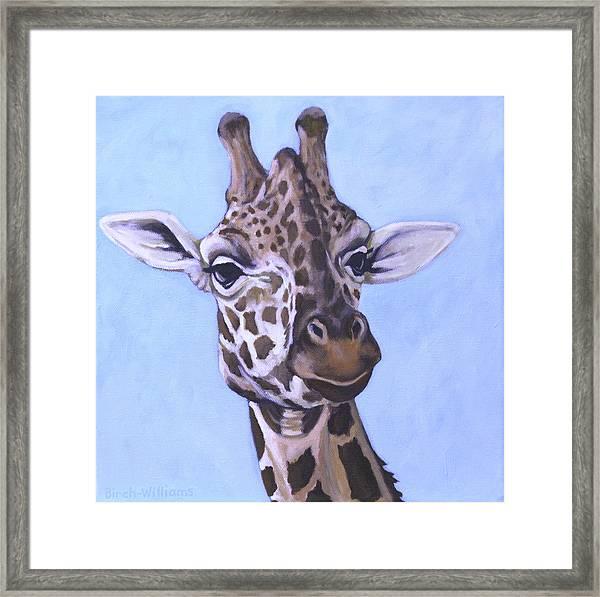 Giraffe Eye To Eye Framed Print