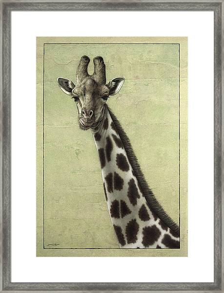 Framed Print featuring the painting Giraffe by James W Johnson