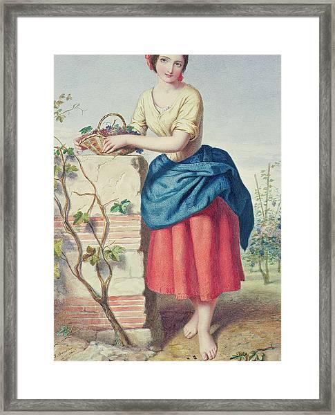 Girl With Basket Of Grapes Framed Print