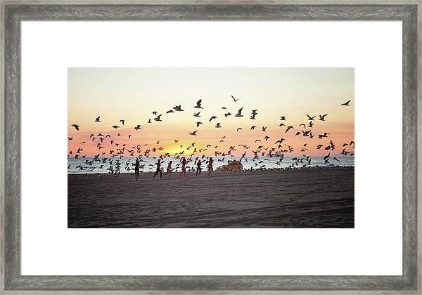 Girls Chasing Seagulls On Beach At Framed Print