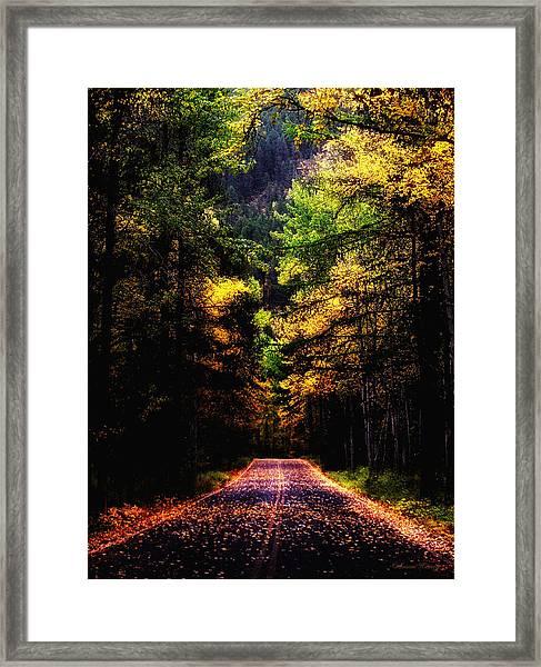 Glacier Fall Road Framed Print