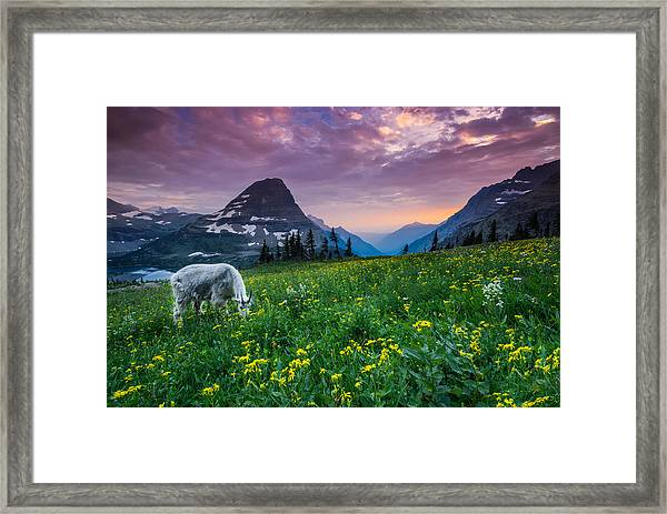 Glacier National Park 4 Framed Print