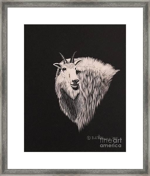 Glacier Park Goat Framed Print