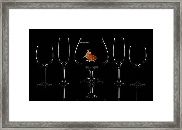 Glass Fish Framed Print