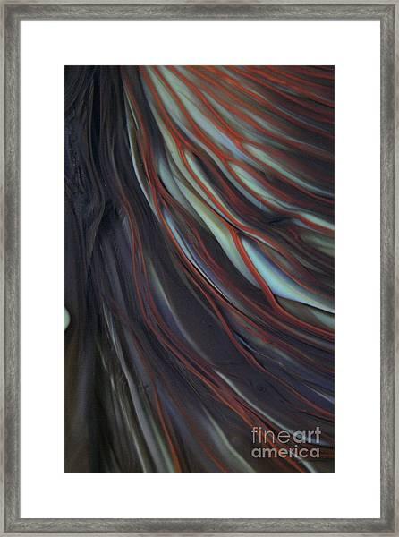 Glass Veins Framed Print