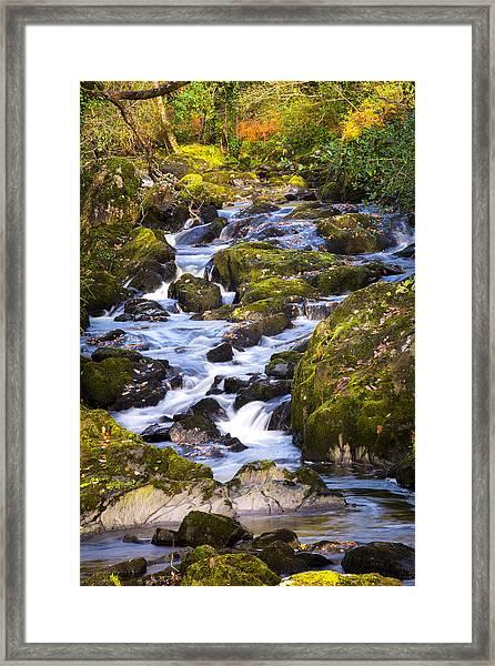 Glengarriff Woods In Autumn Framed Print