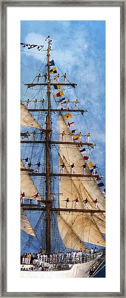 Gloria II Framed Print
