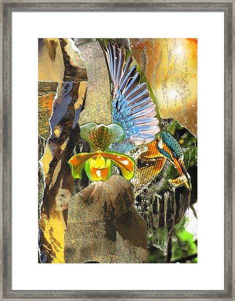Glory Be To God For Dappled Things Framed Print
