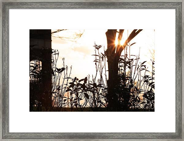 Glowing Landscape Framed Print