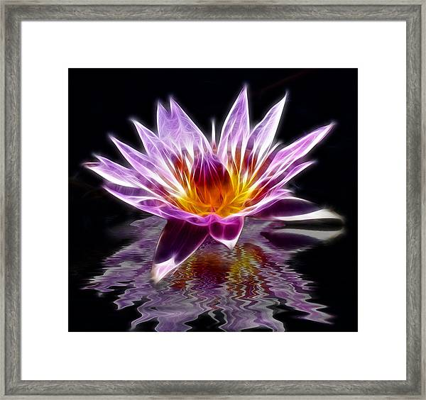Glowing Lilly Flower Framed Print