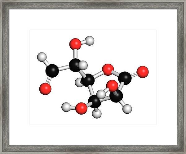 Glucuronolactone Molecule Framed Print by Molekuul