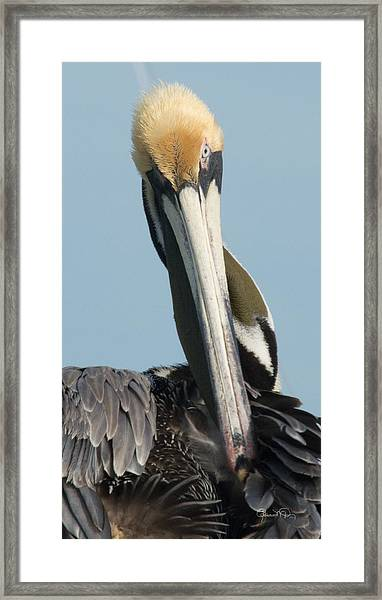 Go Away Framed Print