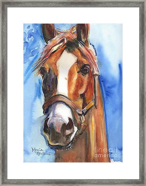 Horse Painting Of California Chrome Go Chrome Framed Print