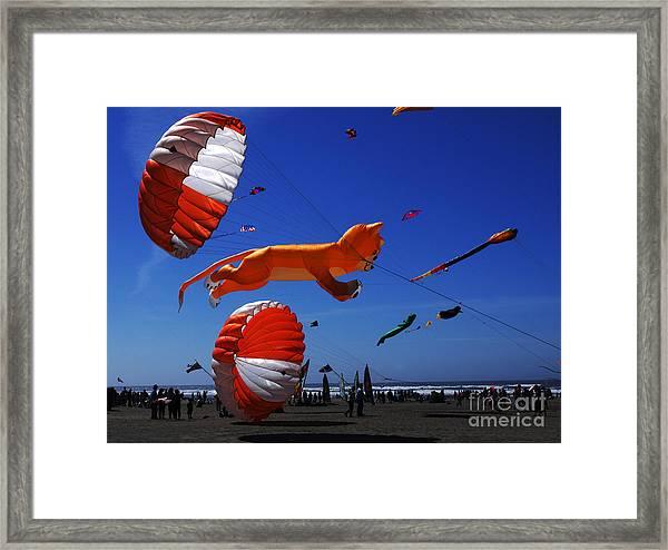 Go Fly A Kite 1 Framed Print
