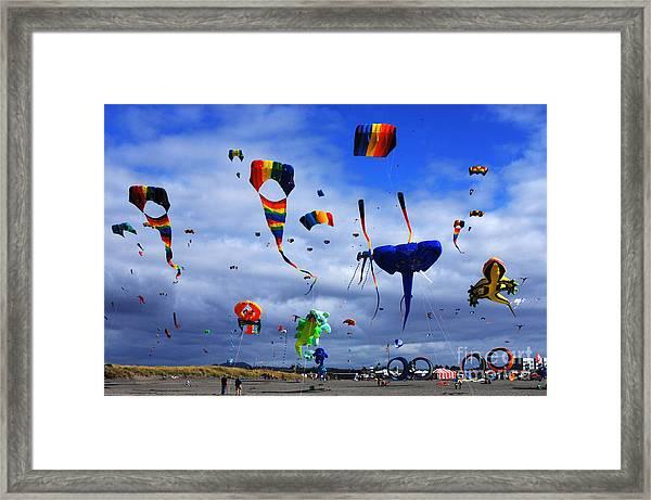 Go Fly A Kite 4 Framed Print
