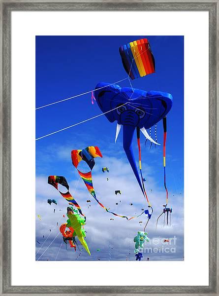 Go Fly A Kite 5 Framed Print
