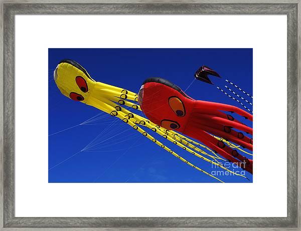 Go Fly A Kite 6 Framed Print