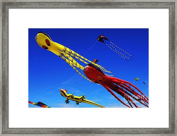 Go Fly A Kite 7 Framed Print