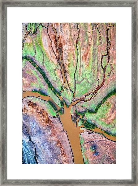 God's Palette Framed Print
