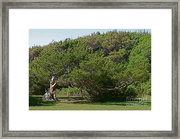 Goin' Up The Country Framed Print