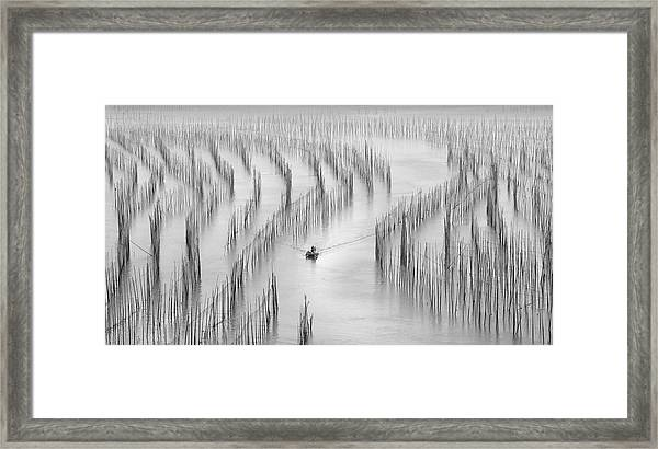 Going Back Framed Print