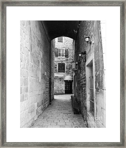Framed Print featuring the photograph Going Gaga by Mel Steinhauer