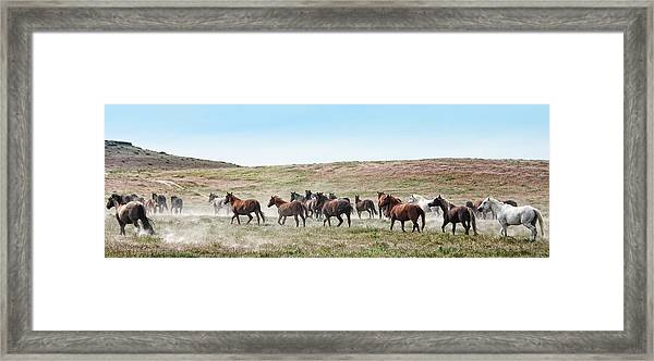 Going To Higher Ground Framed Print by Gene Praag