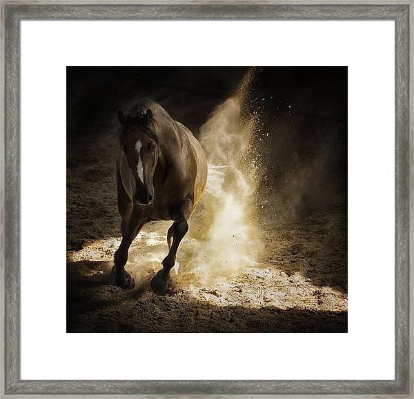 Gold Dust Framed Print