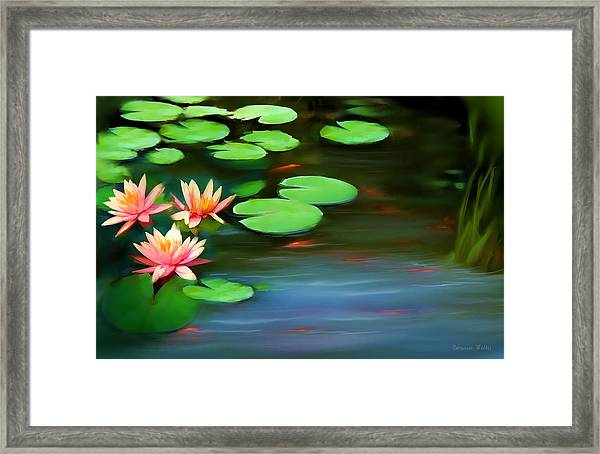 Gold Fish Pond Framed Print