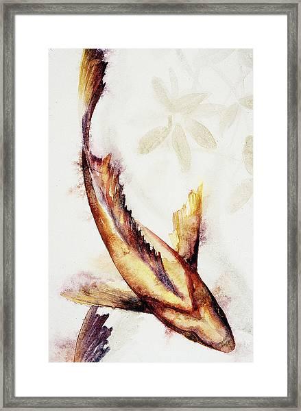 Gold Mangrove  Framed Print