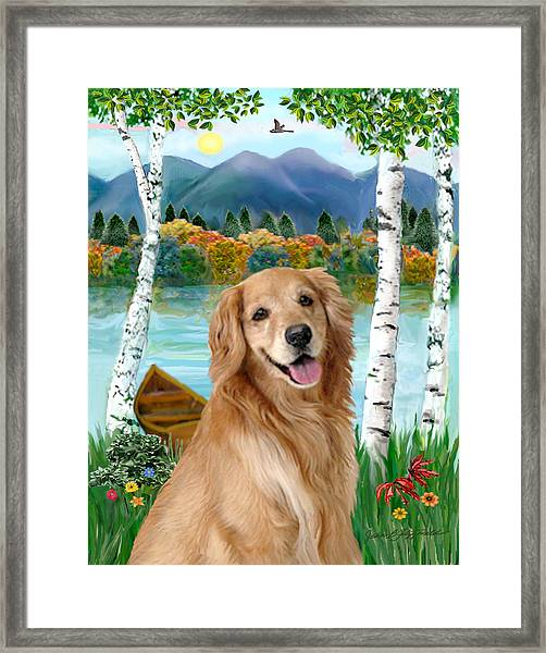 Golden At The Lake Framed Print