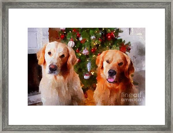 Golden Christmas Framed Print