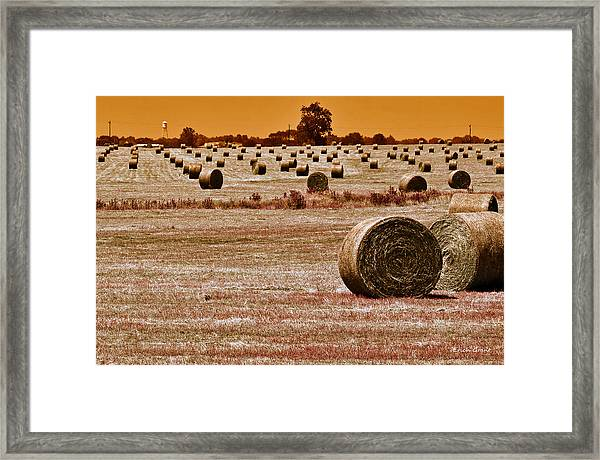 Golden Country Framed Print