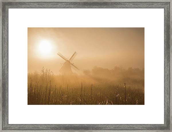Golden Dawn. Framed Print by Ton Drijfhamer