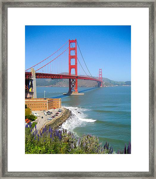 Golden Gate Wildflowers Framed Print