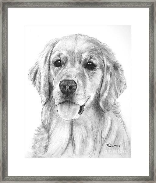Golden Retriever Jessie Adult Framed Print