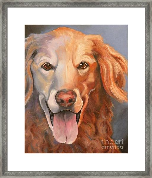 Golden Retriever Till There Was You Framed Print