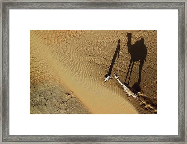 Golden Shadows Framed Print