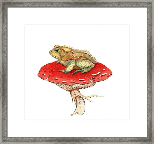 Golden Toad Framed Print