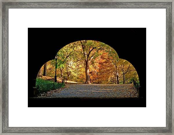 Golden Underpass Framed Print