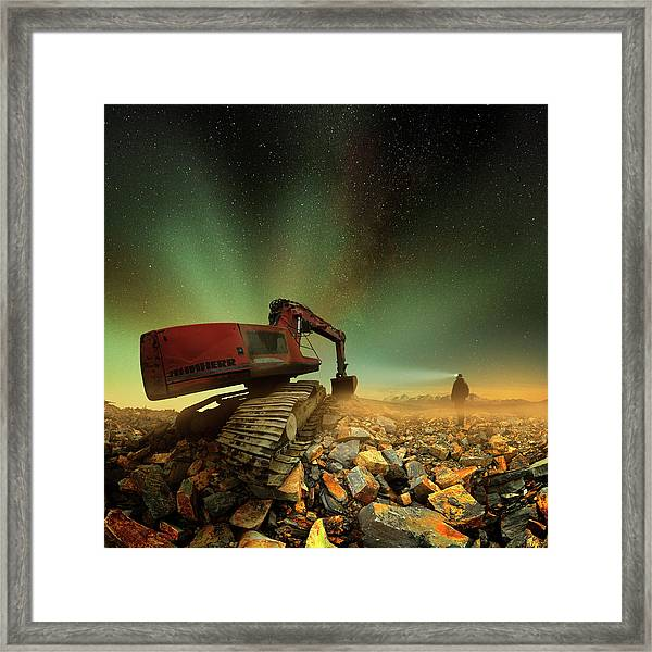 Goldherer Framed Print by Peter Majkut
