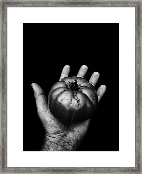Goliath Means Goliath Framed Print