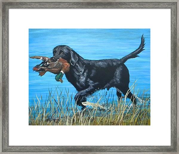 Good Dog Framed Print