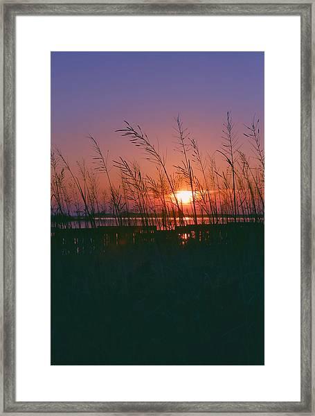 Goodnight Sun Framed Print