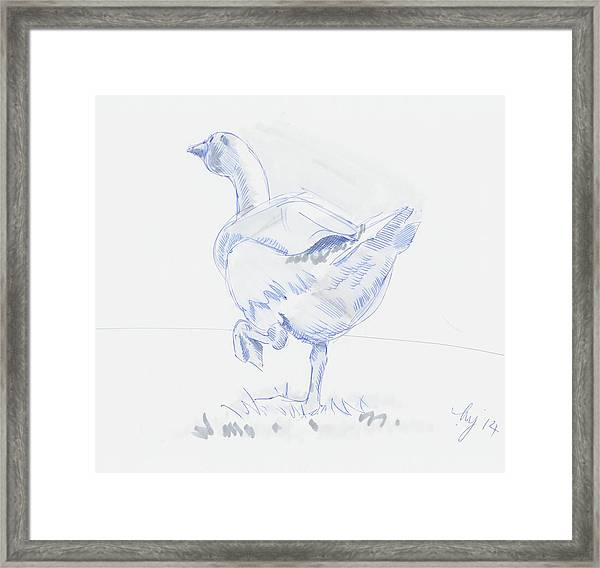 Goose Walking Framed Print