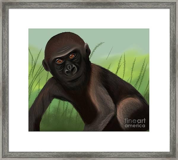 Gorilla Greatness Framed Print