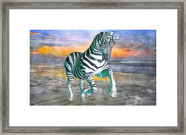 Got My Stripes Framed Print