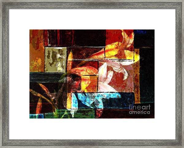 Gracefull  Framed Print