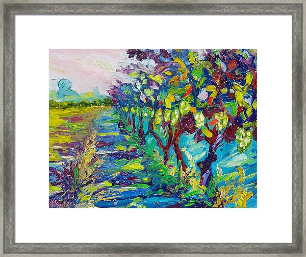 Grape Vines Painting Framed Print