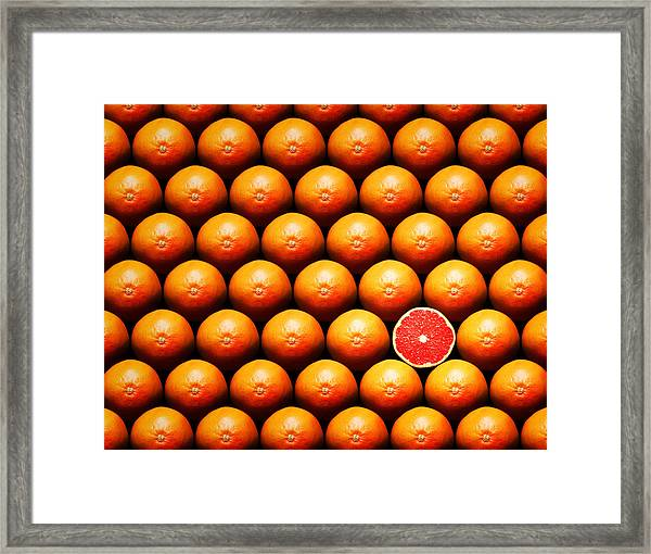 Grapefruit Slice Between Group Framed Print